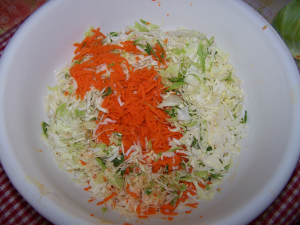cabbage_and_carrots