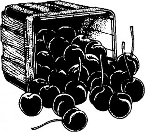 Cherries In A Box