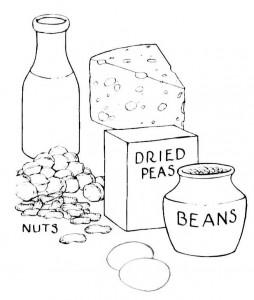 lacto-ovo-protein